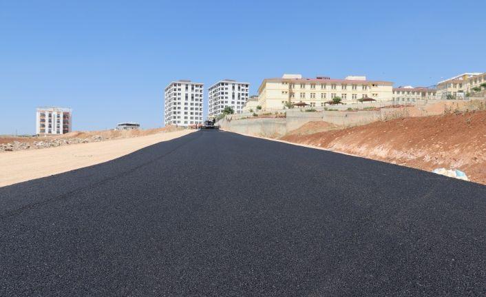 Siirt Belediyesi asfalt çalışmalarını sürdürüyor