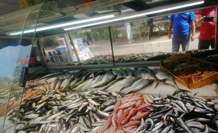 Erdek'te balık tezgahları şenlendi