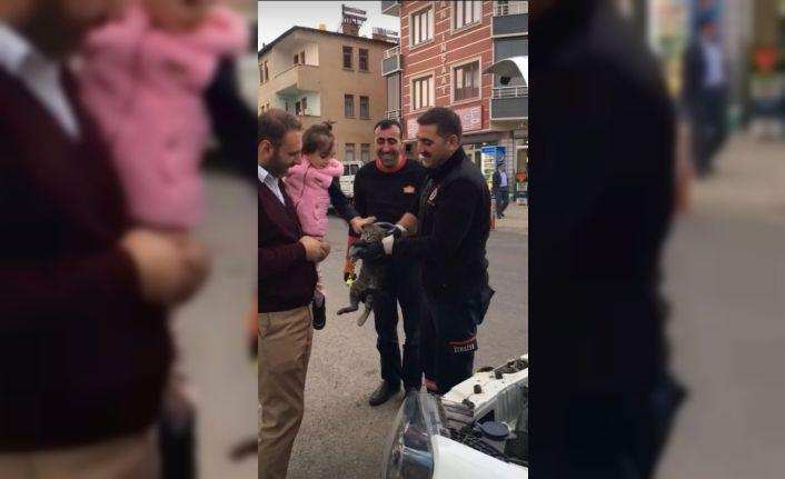 Bingöl'de aracın motor kısmına giren kediyi itfaiye ekipleri kurtardı