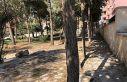 Kızıltepe Belediyesi çöplüğe dönen Ulu Cami...