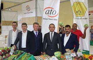 Anadolu'nun ürünleri ATO standında sergilendi