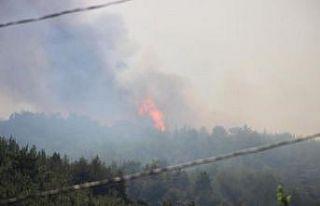 Menderes'teki yangını söndürme çalışmaları...