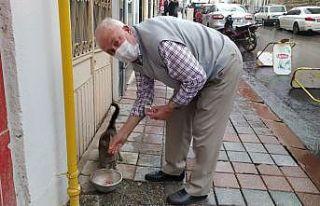 73 yaşındaki gurbetçi sokak hayvanlarını besliyor