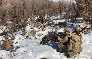 """""""Eren-11 Sehi Ormanları"""" Operasyonu başladı"""