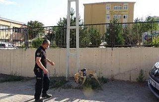 Kayseri polisinden okul bölgelerinde 'narko-okul'...