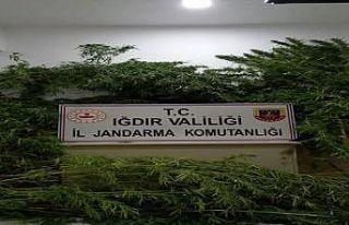 Uyuşturucu kaçakçılarına geçit yok