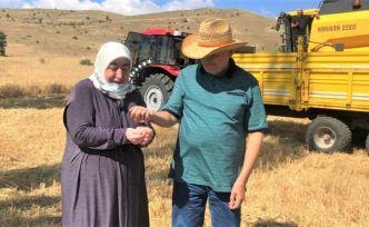 AK Parti Genel Başkanvekili Binali Yıldırım köyünde arpa hasadı yaptı