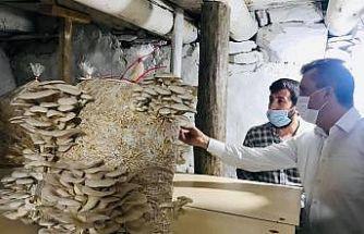 Kaymakam Solmaz mantar üreticileriyle buluştu