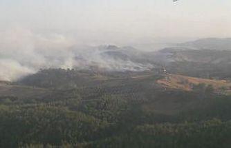 Manisa'daki orman yangınına karadan müdahale devam ediliyor