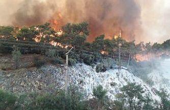 Muğla'nın bazı bölgelerinde yangın dolayısıyla elektrikler kesildi