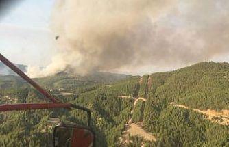 Muğla'daki yangınlara bir yenisi daha eklendi