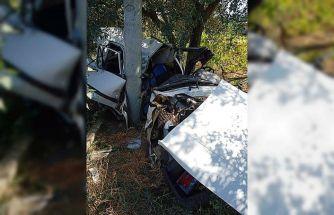 Kontrolden çıkan otomobil direğe çarptı: 1 ağır yaralı