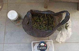 Sakarya'da 21 kilo 100 gram esrar yakalandı: 4 gözaltı