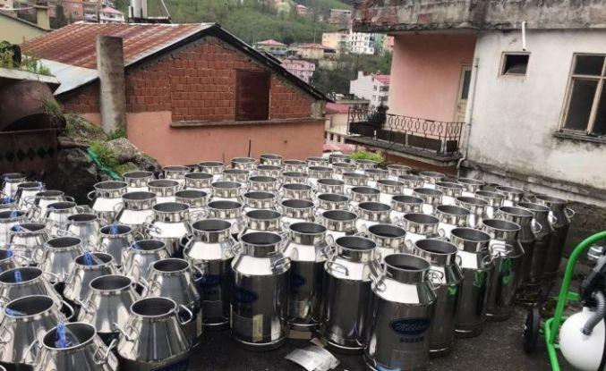 Giresun'da manda yetiştiriciliği ve manda sütü toplama projesi hızla geliştiriliyor