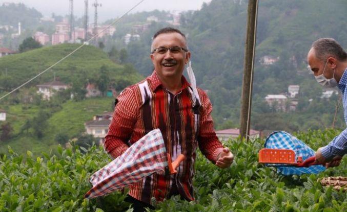 """Rize Valisi Kemal Çeber: """"Çay toplamak için Rize'ye gelmek isteyenlerin sayısı 36 bine, gelenlerin sayısı 7 bine ulaştı"""""""